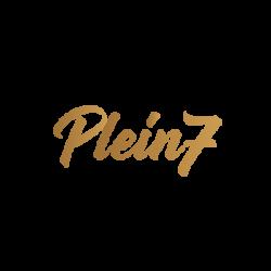 Plein 7 Logo